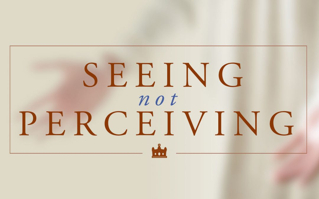 Seeing, Not Perceiving
