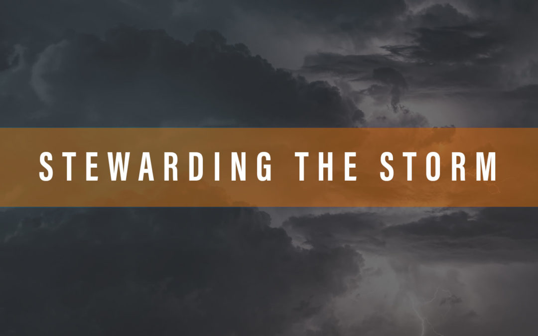 Stewarding the Storm – Part 2