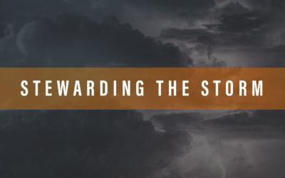 Stewarding the Storm – Part 2