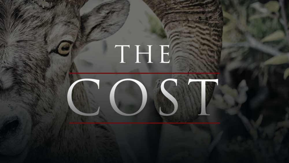 The Cost Image