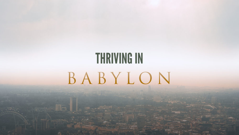 Thriving In Babylon Image