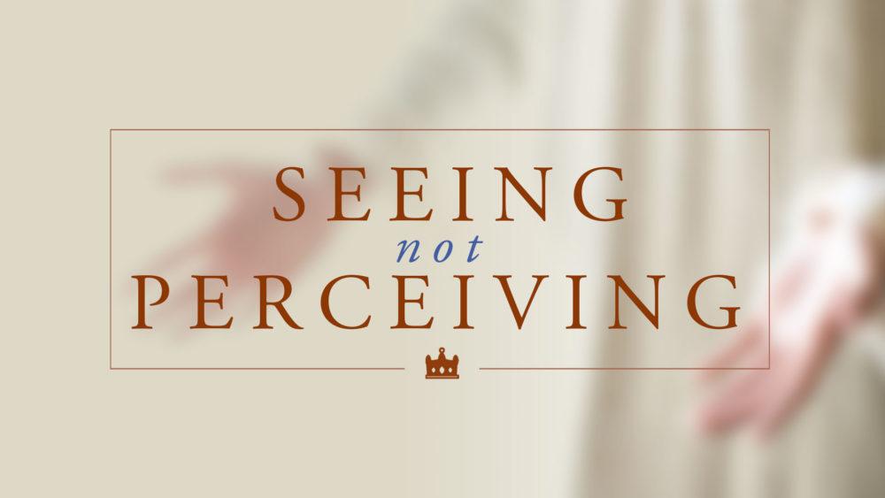 Seeing, Not Perceiving