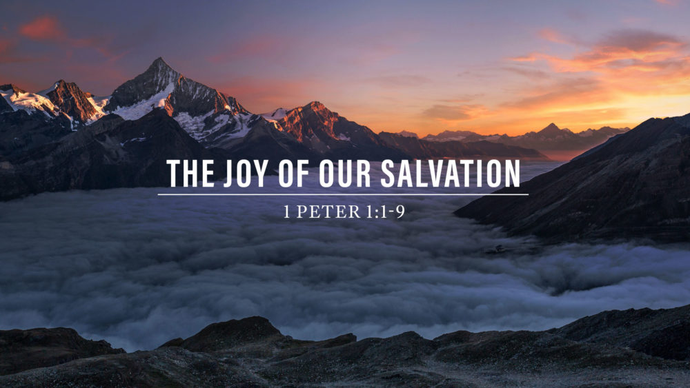 The Joy of Our Salvation Image